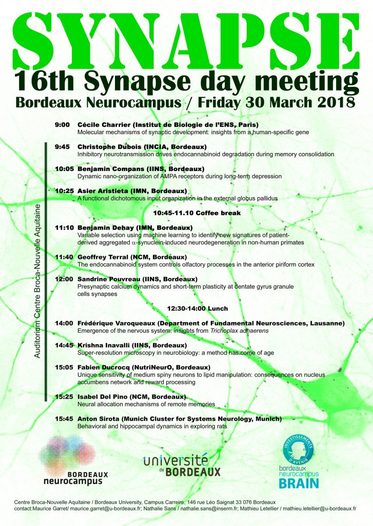 16th Synapse day meeting