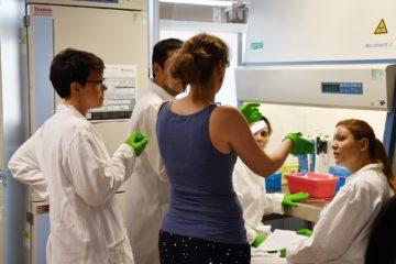 Ecole des neurosciences de Bordeaux - CAJAL