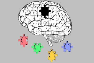 Florent Laferrière et al. dans Nature Neuroscience