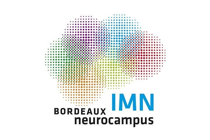 Neurocampus Chair - IMN