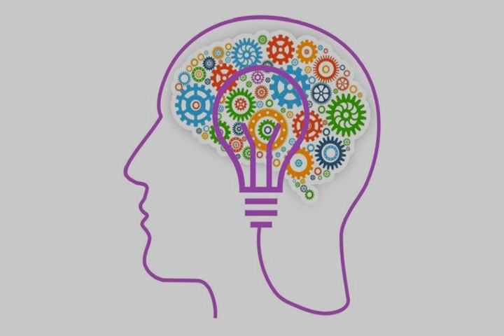 Colloque : Le cerveau en lumières