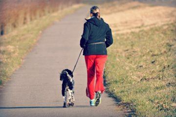 Expertise collective – INSERM : Bilan de l'impact de l'activité physique sur la santé.