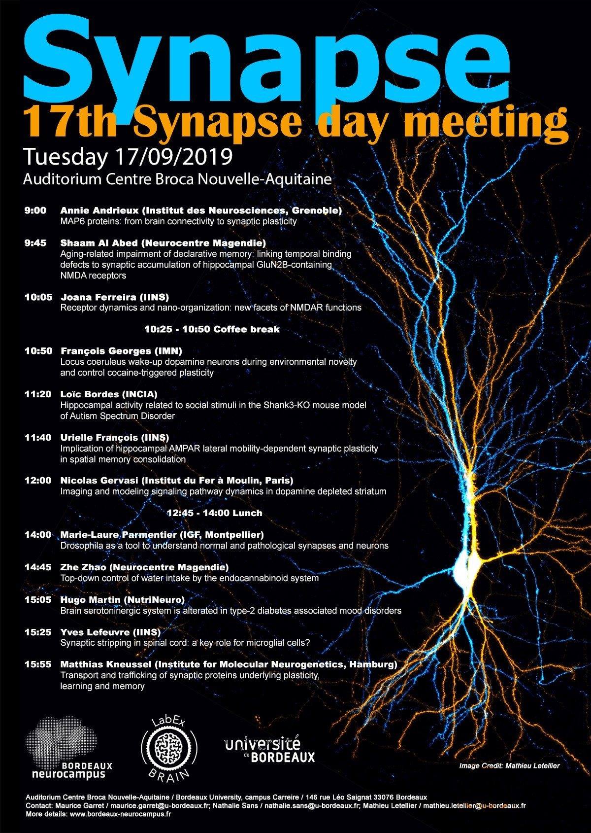 Affiche_synapse_day_2019