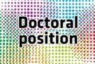 """PhD position : """"Decoding the interplay between autophagy and exosomes at the synapse"""""""