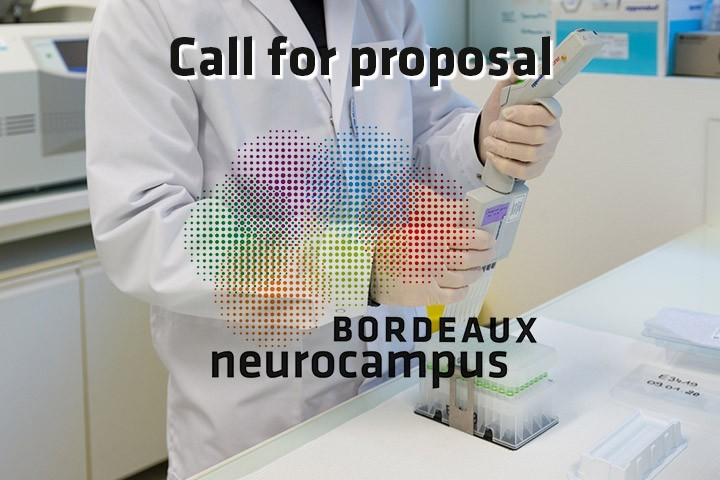 Call for proposal: Bordeaux Neurocampus seed projects