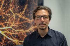 Valentin Nägerl - Crédit Sharpen