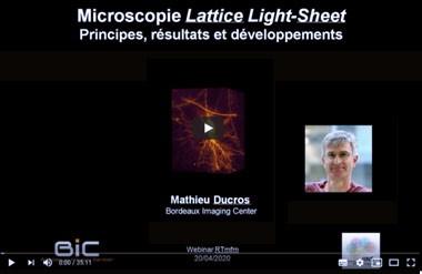Webinar sur le lattice light sheet par Mathieu Ducros