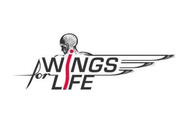 Wings for life (spinal cords research) grants