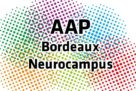 Bordeaux Neuroampus platform support
