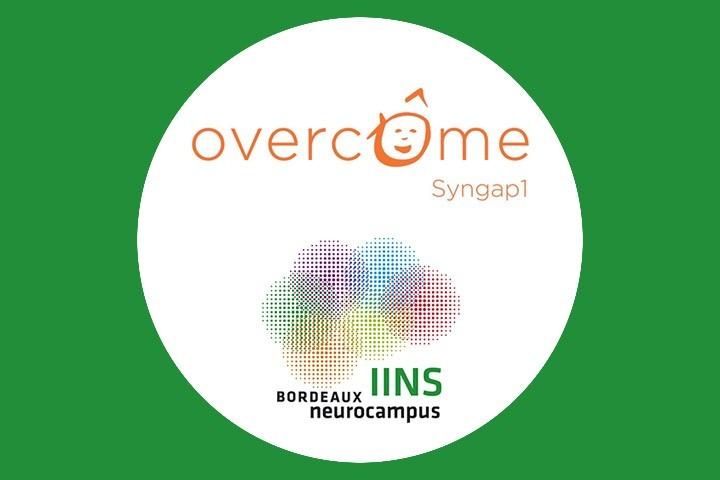 Partenariat entre l'IINS et l'association Overcôme SynGAP1