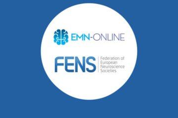 Le master EMN-Online lauréat de l'appel «NENS Education & Training Cluster»