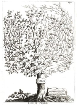 An early attempt at a nosological classification, this classificatory tree of fevers depicted the relationships among more than 100 types of fever. From Francesco Torti, Therapeutice Specialis ad Febres Periodicas Perniciosas, 1712 (Licensed under CC BY 4.0, courtesy of the Wellcome Trust.)